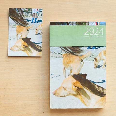 Buchcover Dummy-1